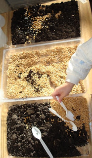 More Seeds, Dirt, and Kids