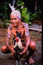 The Dayak Culture