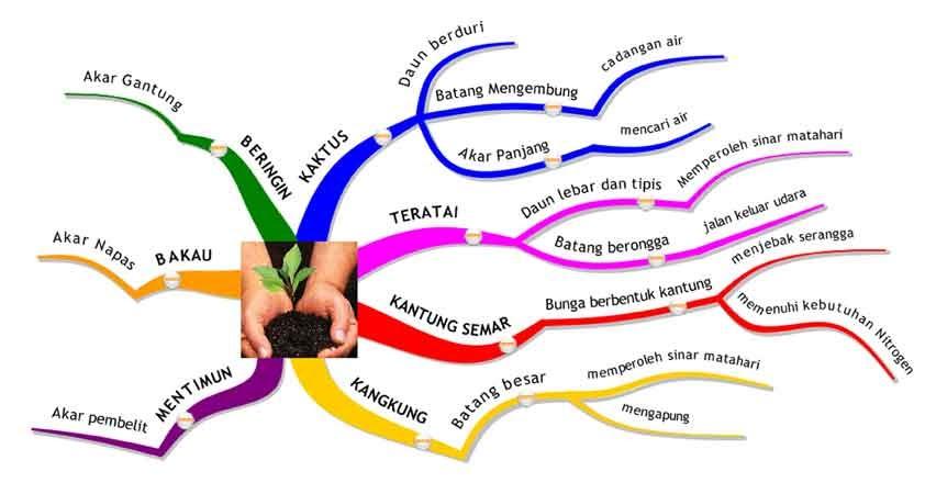 kumpulan mind mapping materi pelajaran ipa sd paqoale