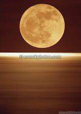 Moon-rise-over-Ocean