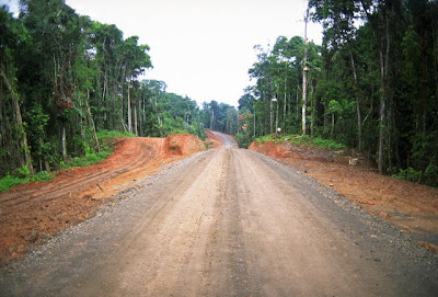 A road in the Amazon Rainforest