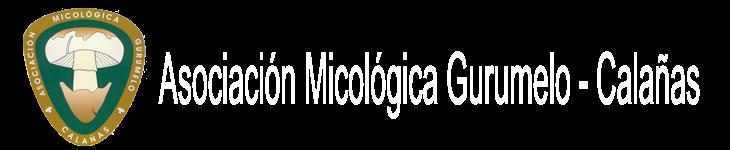 Asociación Micológica Gurumelo - Calañas