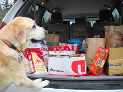 Hector eyes a load of groceries destined for the food drive