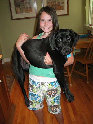 Balck Lab puppy Tulia with raiser Bethany