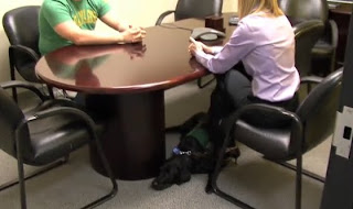 Black Lab Melville lies under Lindsey Amos's desk during a meeting at the office