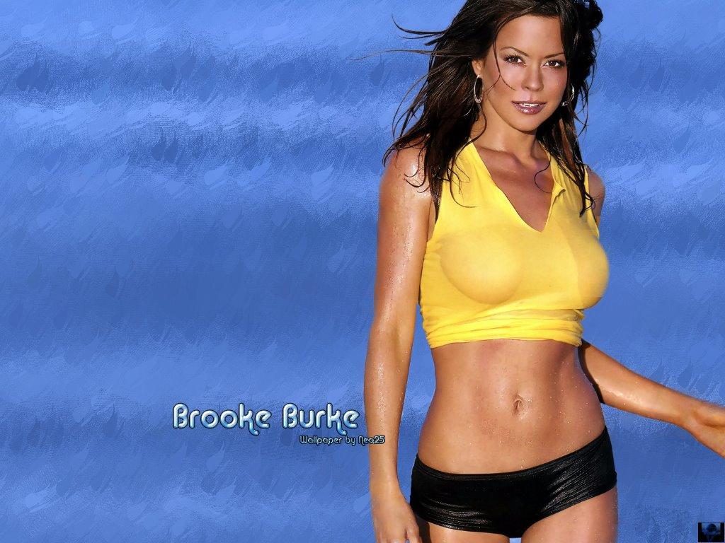 http://4.bp.blogspot.com/_mjhpBH0Sa7g/S9Z647lA1rI/AAAAAAAAAd0/jwFNL0Ieym4/s1600/BrookeBurke-14.jpg