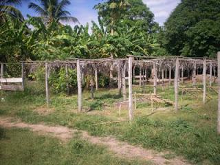 Proyecto sembrando futuro construccion del vivero for Materiales para la construccion de un vivero
