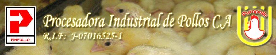 Procesadora Industrial de Pollos