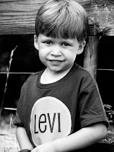 levi tipton