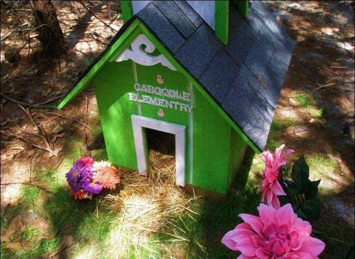 http://4.bp.blogspot.com/_mmBw3uzPnJI/S-RK7zIWkDI/AAAAAAABO0Q/rpZbFm9EYQ4/s1600/homeless_cats_24.jpg