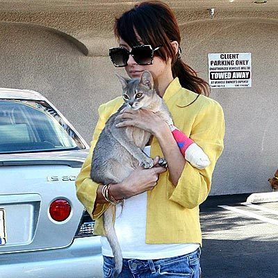 [Celebrities_and_their_cats_62.jpg]