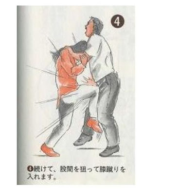 japan 03 Weird Japanese Self Defense