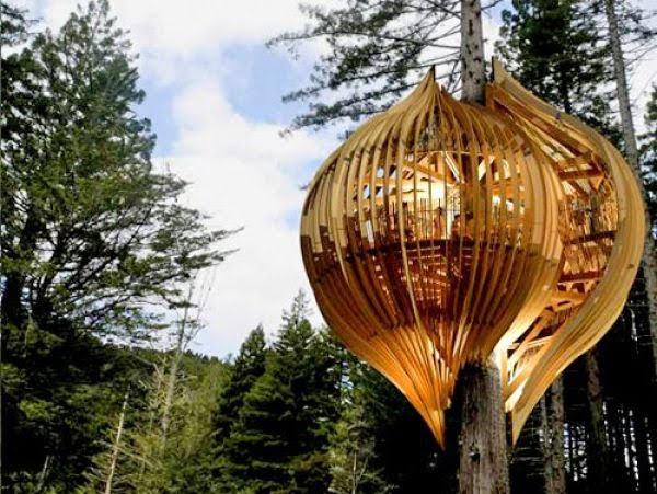 Beautiful tree houses damn cool pictures for Treehouse designers