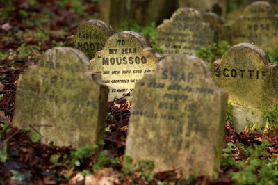 Pet Cemetery in Central London Seen On www.coolpicturegallery.us