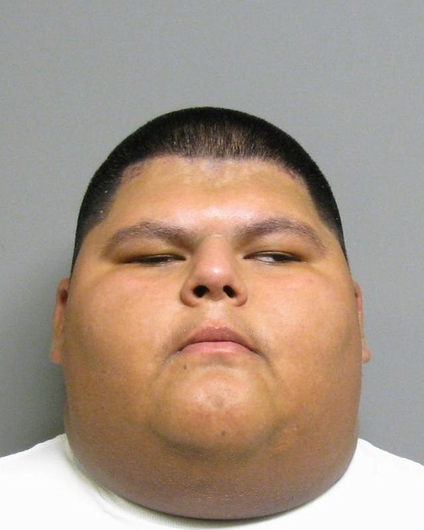 The 40 Best Mug Shots Of 2010 Damn Cool Pictures