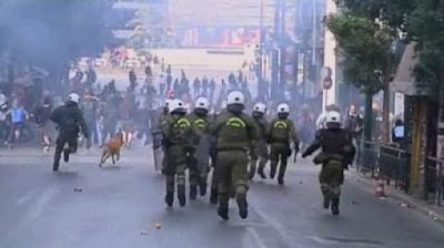 The Return of the Riot Dog Seen On www.coolpicturegallery.us