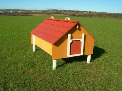 Chicken Hotel Seen On www.coolpicturegallery.us