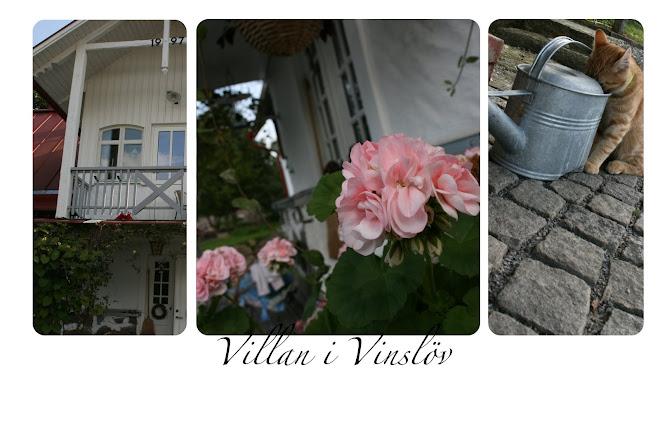 Villan i Vinslöv