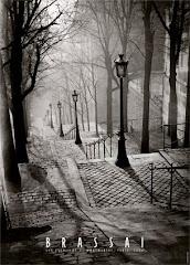Les Escaliers de Montmartre, París