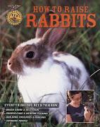 How to Raise Rabbits: Colony raising, anyone?