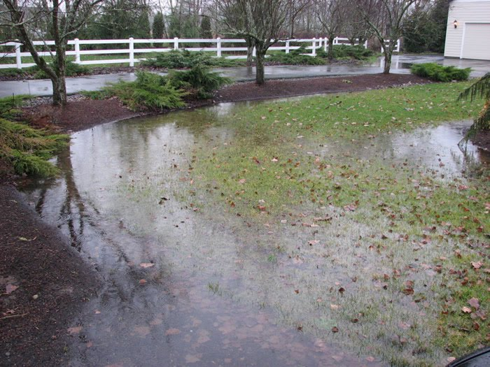 French Drains In Backyard Part - 19: Drainage Solutions -- French Drains
