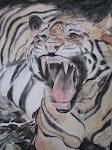 Screamming Tiger
