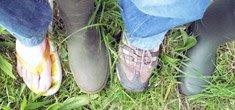 Nos pieds dans l'herbe