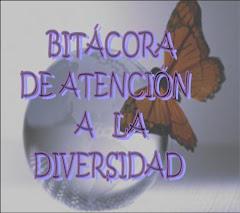 BITÁCORA DE ATENCIÓN A LA DIVERSIDAD