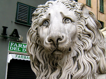 The Other Lion of San Lorenzo