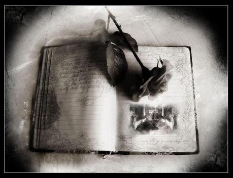 DEJALO IR................ Rosa+gotica+en+libro