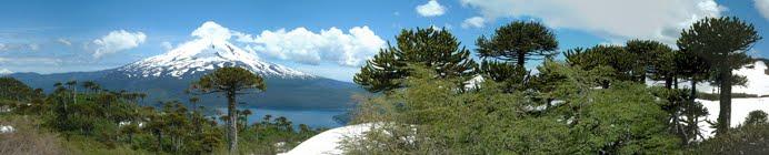 Reserva de Biosfera Araucarias