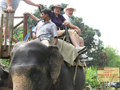 "elephant ""joy ride"""
