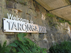 taronga zoo's lower entrance