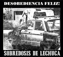 DESOBEDIENCIA FELIZ_SOBREDOSIS DE LECHUGA