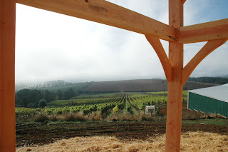 timber frame by the vineyard