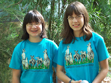 Kangaroo Field Trip - Can&#39;t leave without the T-shirt!