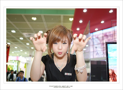 Hwang Mi hee WIS 37 Hwang Mi Hee – World IT Show 2010