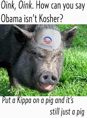 Obama campaign pigs we are