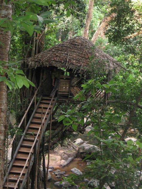 Thommankuthu - House on tree