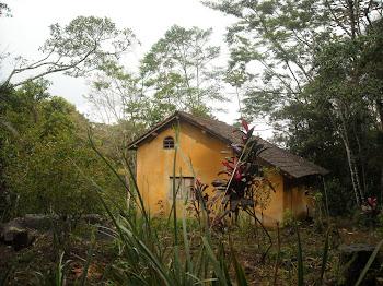 Casinha da Floresta