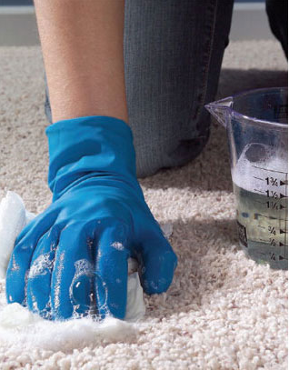 Homemade Carpet Cleaner Recipes - Frugal Living