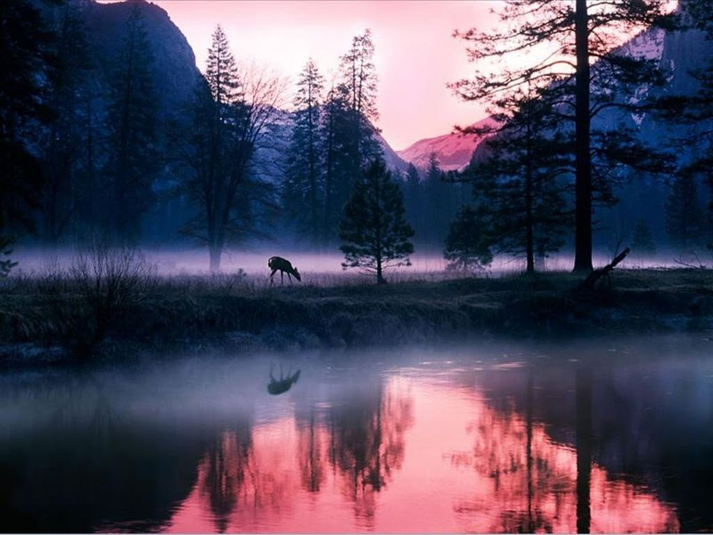 9 Mystical HD Wallpapers   Backgrounds - Wallpaper Abyss