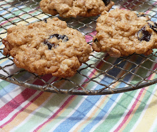 Sunset Zaguán: Secondary Injuries and Oatmeal Cherry Walnut Cookies
