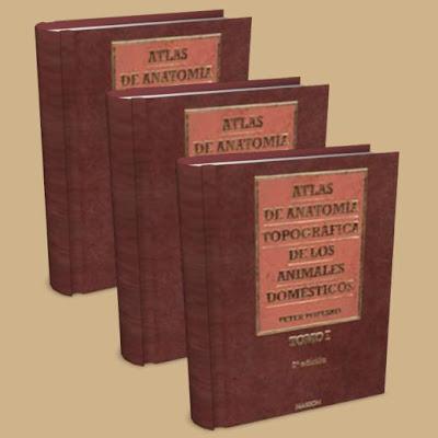 Atlas de Anatomía de los Animales Domésticos - Popesko Atlas+de+Anatomia+topografica+de+lo+animales+domesticos+-+book