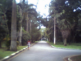 Jardim Botanico da Cidade de Santos