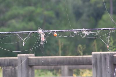 Bon Vendredi 8-22-2010+Fishing+004