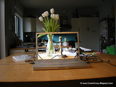Transparent screen vase