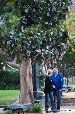 Dollar Tree Money does grow on the trees