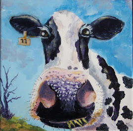 Holstein cow....of cow series