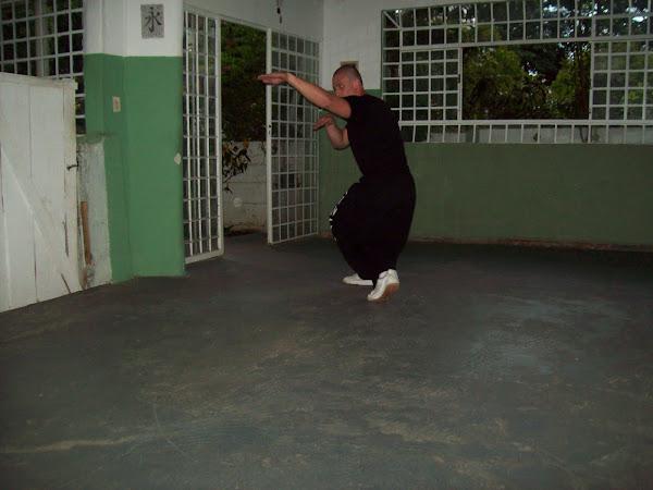 POSTURA DA SERPENTE